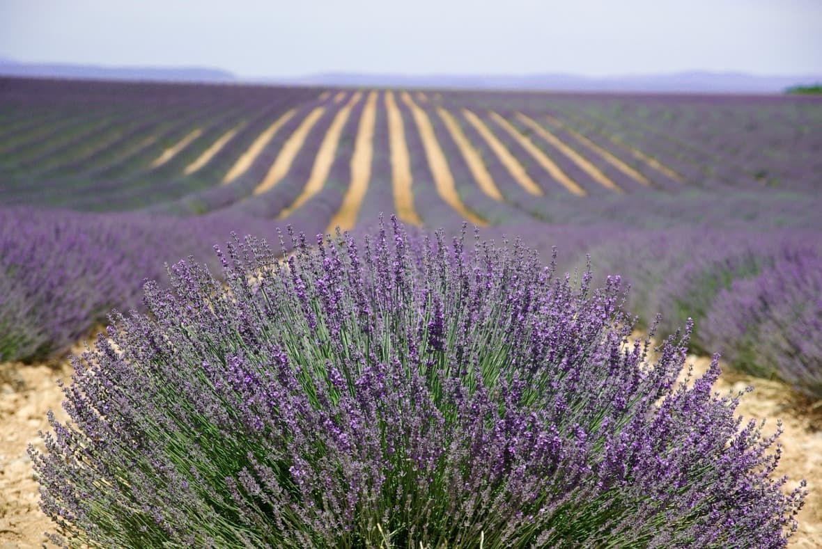 Manuál nacesty - Provence