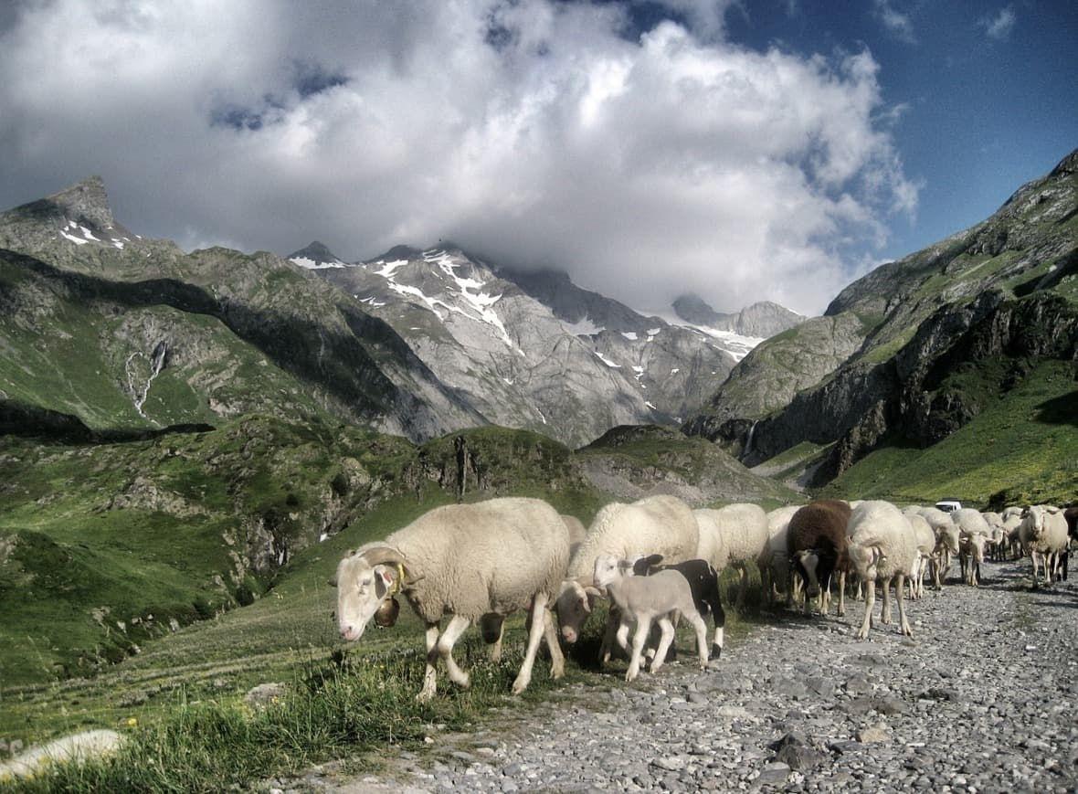 Manuál ne cesty - Pyreneje