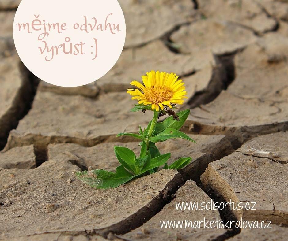 Změny vživotě - mějte odvahu růst